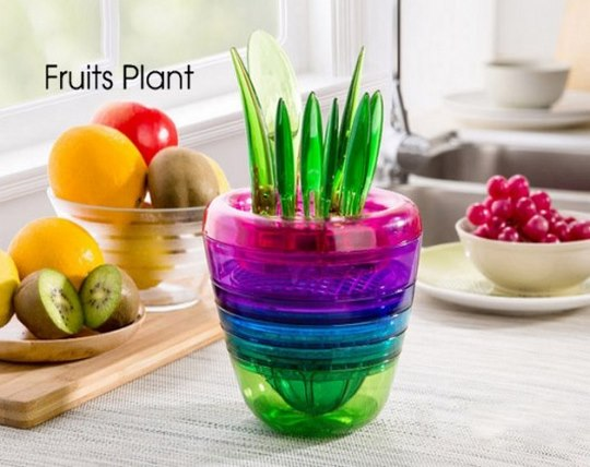 magic-pot-fruit-plant-plant
