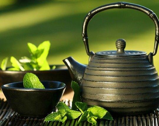 slimming-dogadan-medicinal-plants