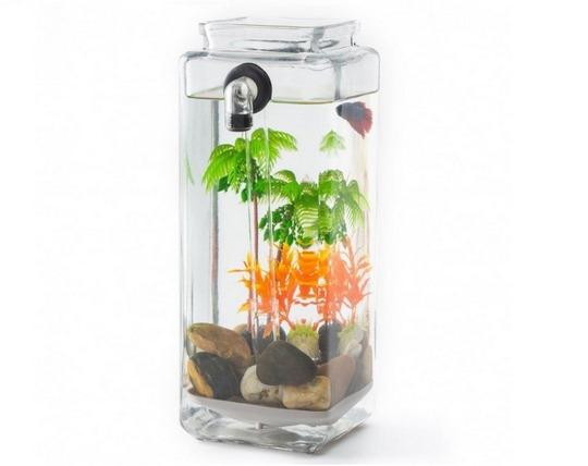magic-aquarium-with-water-cleaning-capability