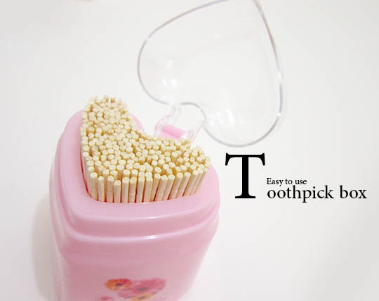 toothpick-with-special-container