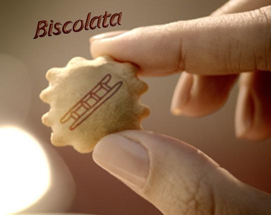 chocolate-biscolata-biscuit-chocolate-biscuit