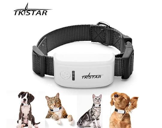 مینی جی پی اس همراه مخصوص حیوانات TKstar
