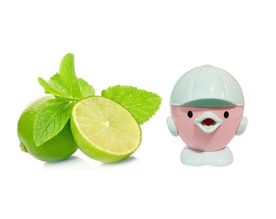 fantastic-lemon-juicer