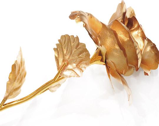golden-rose-solo-leaf