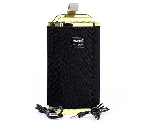 wster-speaker-ws3130